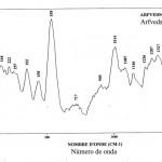 Arfvedsonite (FTR)