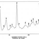 Biotite (FTR)