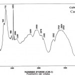 Cancrinite (FTR)