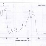 Phlogopite (IRS)