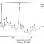 Phlogopite (FTR)